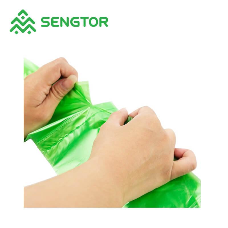 Sengtor Array image123