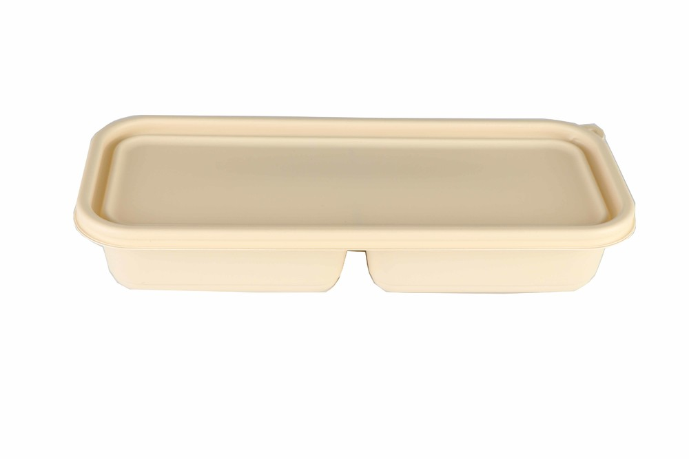 Biodegradable disposable lunch box