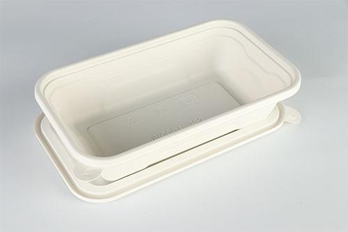 Square biodegradable lunch box