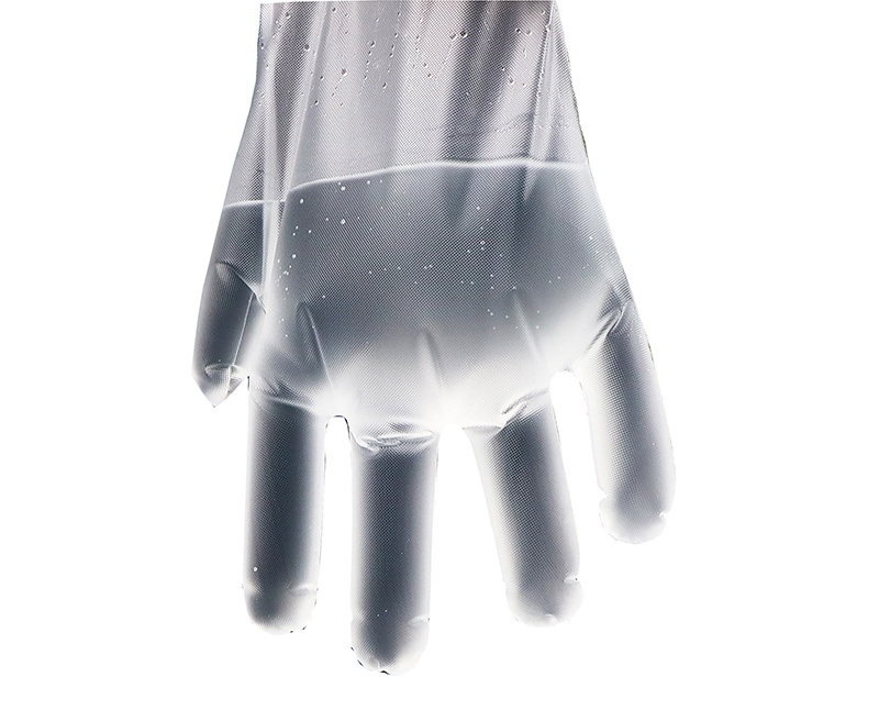 Disposable gloves for food contact